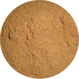 灵芝发酵液粉